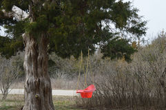 Качание Стоковая Фотография RF