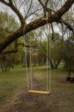 Качания дерева Качания сада качания дерева стоковое изображение rf
