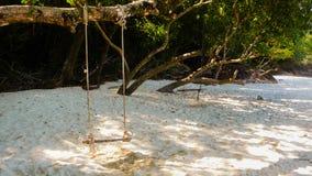Качания на пляже стоковое фото