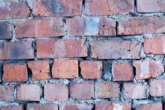 качества фото кирпича предпосылки стена текстуры разрешения высокого старого красная Стоковые Изображения RF