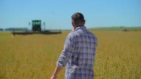Качество земледелия управлением фермера, мужской человек фермера с передатчиком на пшеничное поле поле зерна, сезон урожая, сельс сток-видео