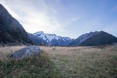 Кашевар AorakiMount, южный остров Новая Зеландия Стоковые Изображения RF