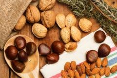 Каштаны, миндалины, грецкие орехи Стоковая Фотография RF