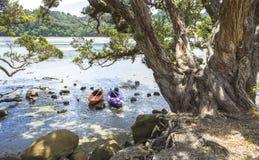 2 каяка на пляже Окленде Новой Зеландии Wenderholm; Региональный парк Стоковые Изображения RF