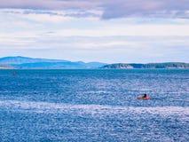 Каяк в океане Стоковые Фотографии RF