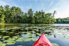 Каяк на озере с пусковыми площадками лилии Стоковое Изображение
