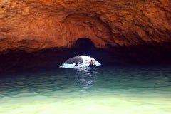 Каяк пещеры Стоковая Фотография RF