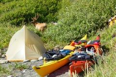 Каяк располагаясь лагерем в глуши Siskiyou, северной Калифорнии стоковые изображения