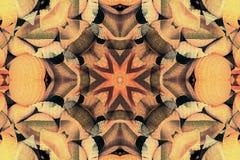 Калейдоскоп с красивым ornamental цвета Стоковое Изображение