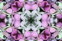 Калейдоскоп с красивым ornamental цвета Стоковые Изображения