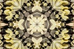 Калейдоскоп с красивым ornamental цвета Стоковая Фотография