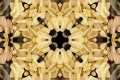 Калейдоскоп с красивым ornamental цвета Стоковая Фотография RF