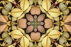 Калейдоскоп с красивым ornamental цвета Стоковые Фото