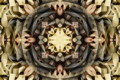 Калейдоскоп с красивым ornamental цвета Стоковые Изображения RF