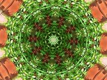 Калейдоскоп Creeper Вирджинии Стоковая Фотография RF