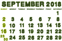 Календарь на сентябрь 2018 на белой предпосылке Стоковое фото RF