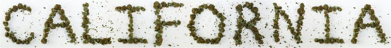 Калифорния сказала по буквам с марихуаной стоковое изображение rf