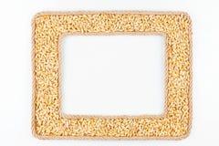 2 кадра сделанного веревочки с зерном ячменя на белом backgro Стоковое Изображение RF