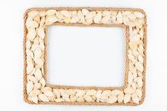 2 кадра сделанного веревочки с семенами тыквы на белом backgr Стоковое Изображение RF