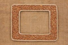 Кадр 2 сделанный веревочки с зернами гречихи на дерюге Стоковая Фотография