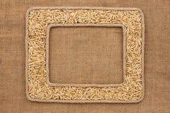 Кадр 2 сделанный веревочки с зернами овса на дерюге Стоковое Изображение RF