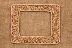 Кадр 2 сделанный веревочки с зернами пшеницы на дерюге Стоковое фото RF
