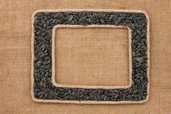 Кадр 2 сделанный веревочки с семенами подсолнуха на дерюге Стоковое Изображение RF