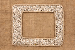 Кадр 2 сделанный веревочки с семенами подсолнуха на дерюге Стоковое Фото