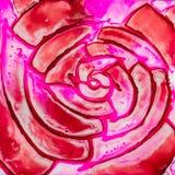 Квадратная акварель с красным цветом и пинком Походит роза Стоковые Фотографии RF