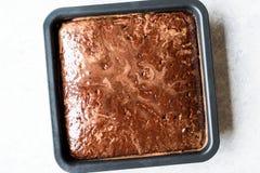 Квадратный сочный торт губки шоколада с соусом в прессформе Стоковое Изображение
