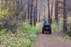 Квад ATV с водителем и пассажиром на волшебном живописном пути в лесе осени Стоковые Изображения RF
