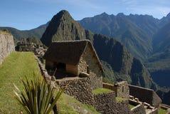 Кварталы Machu Picchu живущие Стоковые Изображения RF