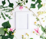 Квартира взгляд сверху кладет пустую рамку фото с модель-макетом листьев лета и цветков маргаритки Стоковое Фото