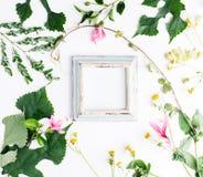 Квартира взгляд сверху кладет пустую рамку фото с модель-макетом листьев лета и цветков маргаритки Стоковые Изображения RF