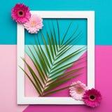 Квартира картинной рамки кладет поздравительную открытку картин минимализма геометрическую Формы природы и картины, пастельные цв Стоковое Фото