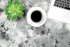 Квартира рабочего места кладет succulent кофе компьтер-книжки таблицы офиса Стоковая Фотография RF