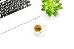 Квартира рабочего места офиса кладет завод succulent зеленого цвета кофе компьтер-книжки Стоковая Фотография RF
