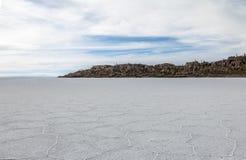 Квартира соли Салара de Uyuni и отдел острова кактуса Incahuasi - Potosi, Боливия стоковые фотографии rf