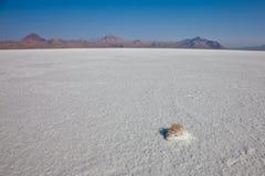 Квартиры соли с горой Стоковые Фотографии RF