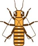 Квадратная пчела Стоковая Фотография RF