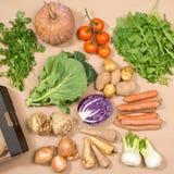 Квадратное изображение собрания свежих овощей и коробки Стоковое Изображение RF