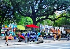 Квадрат Джексона в Новом Орлеане, ЛА Стоковое Фото