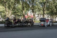 КВЕБЕК (ГОРОД), КАНАДА 13 09 Экипаж нарисованный лошадью 2017 путешествует до исторический район который место всемирного наследи Стоковая Фотография RF