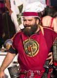 кельтский ратник Стоковая Фотография RF