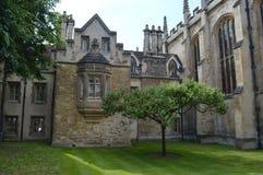 Кембридж, Великобритания Стоковые Фотографии RF