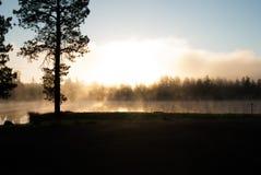 Кемпинги озера белая лошад, Williams, AZ Стоковые Изображения RF