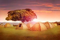 Кемпинг в горах кратера Ngorongoro вышесказанного T стоковое фото rf