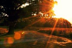 Кемпинг marie озера Стоковое фото RF