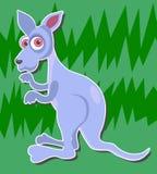кенгуру иллюстрация вектора
