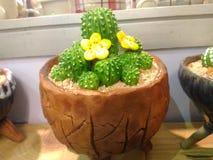 Керамика кактуса стоковое изображение rf